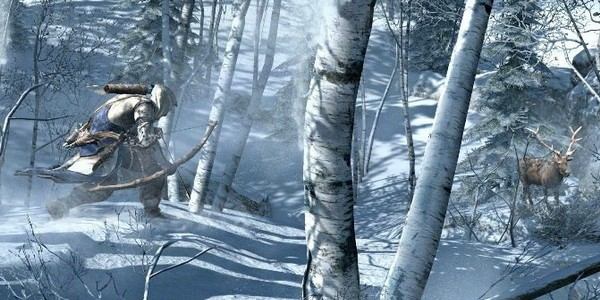 Assassins creed 3_3