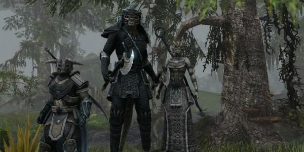 The Elder Scrolls Online_2