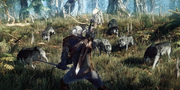 The Witcher 3_3